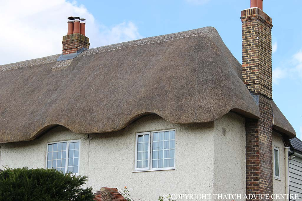Box Gutters Thatch Advice Centre