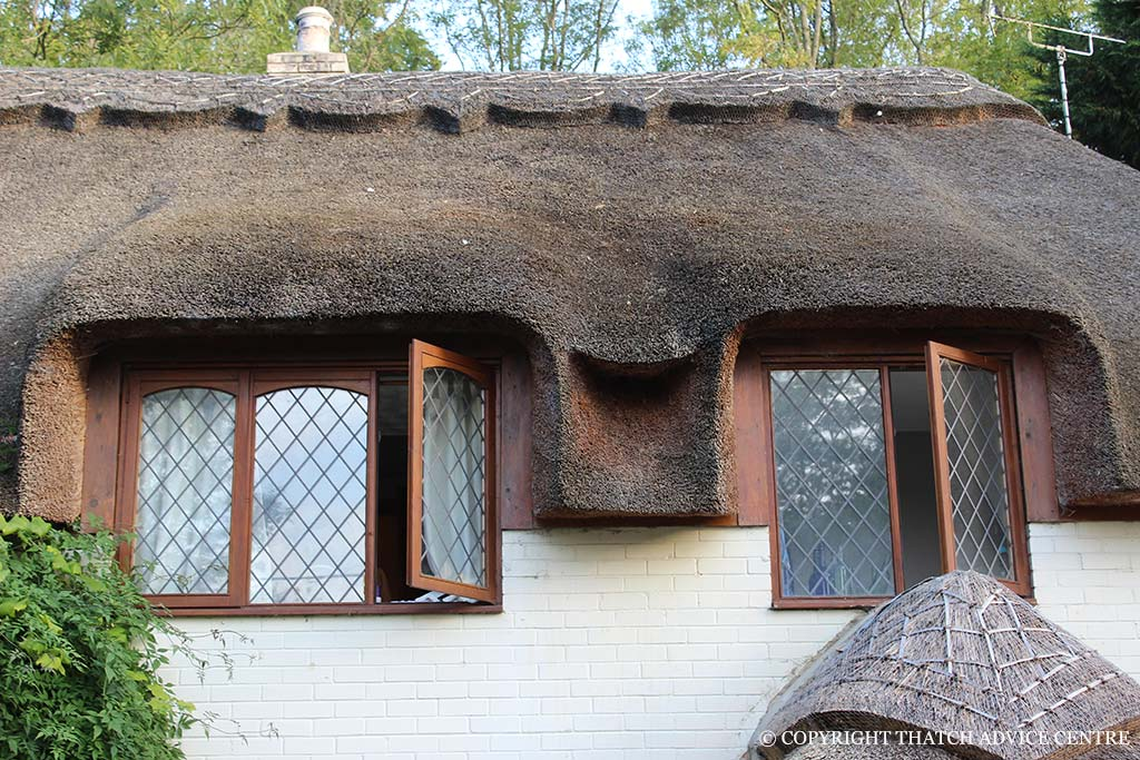 Windows dormer eyebrow velux thatch advice centre - Houses roof windows ...