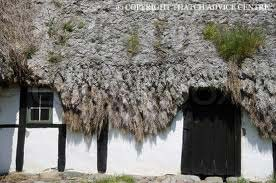 Less Well Known Thatching Materials Thatch Advice Centre