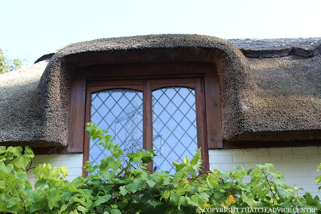 Windows Dormer Eyebrow Amp Velux Thatch Advice Centre