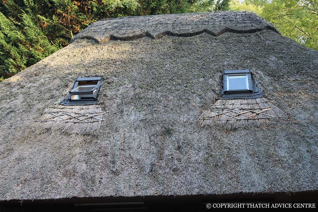 Windows Dormer Eyebrow Amp Velux Thatch Advice Centre