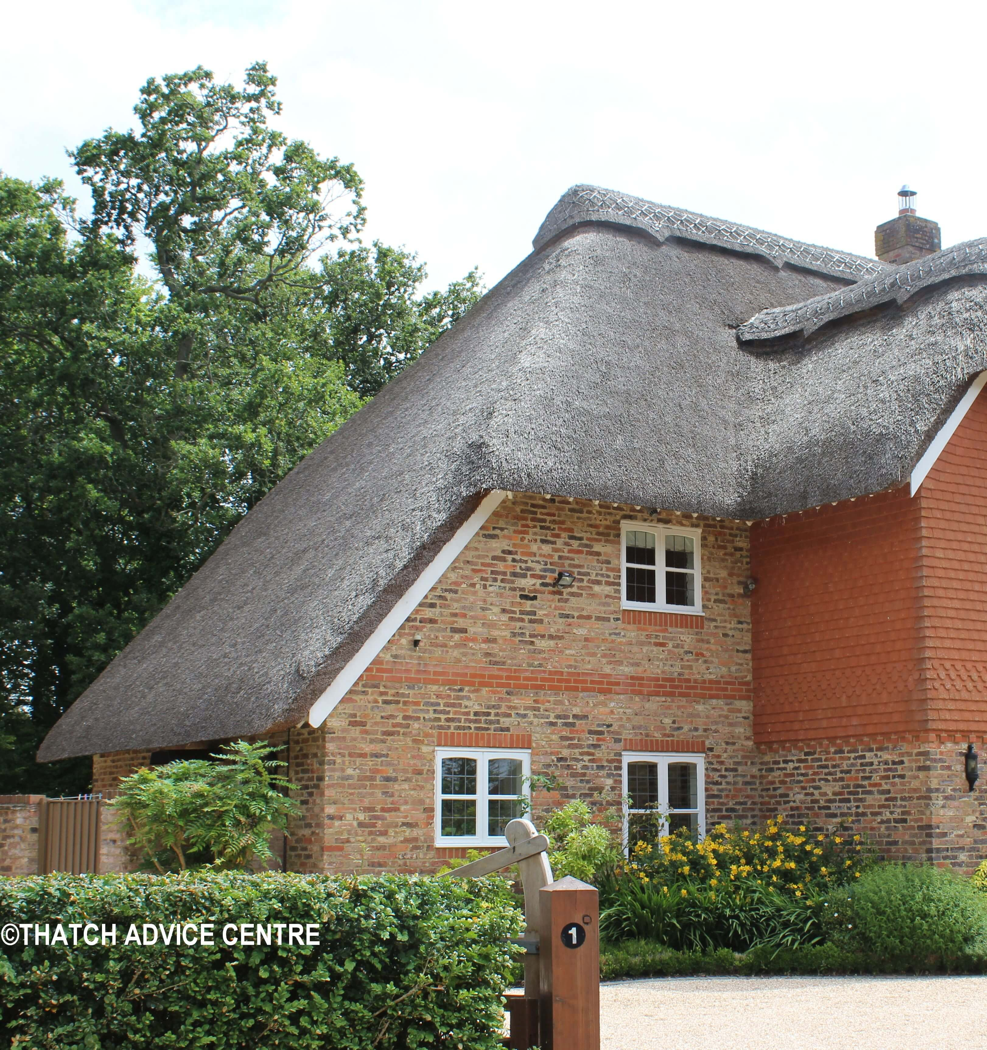 Catslides On A Thatched Roof Thatch Advice Centre