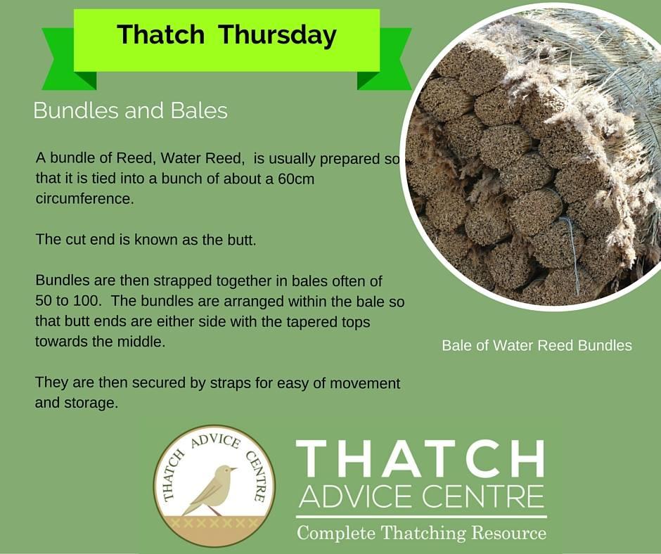 thatch-bundles-and-bales.jpg