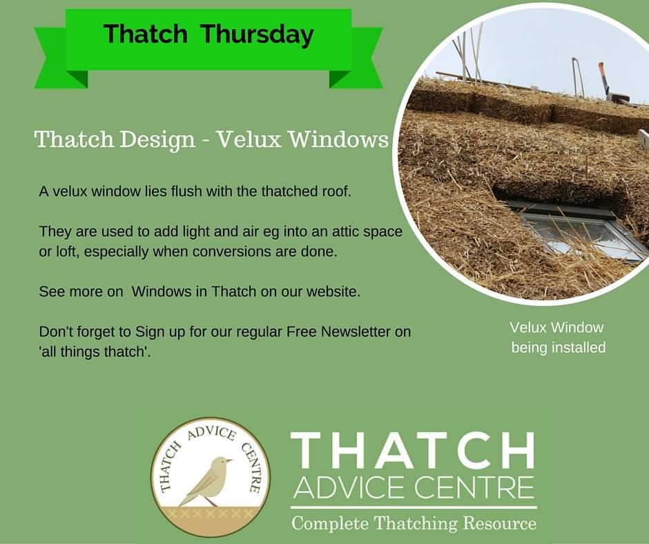 thatch-velux-windows.jpg