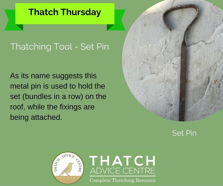 Thatch Thursday Set Pin