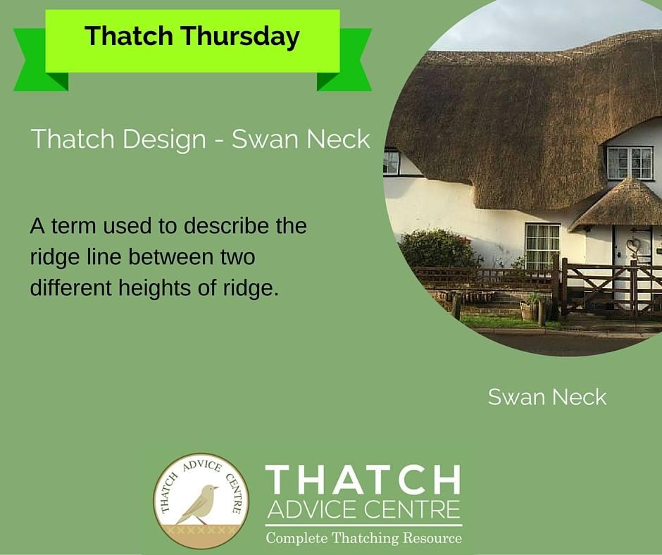 thatch-advice-centre-swan-neck