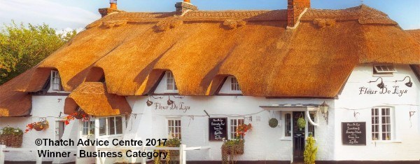 thatch advice centre- fleur de lys