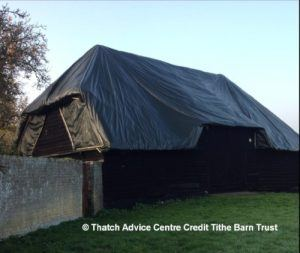 thatch-advice-centre-thatch-preservation