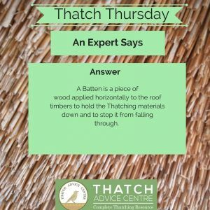 Thatch Thursdays February 2018 answer batten