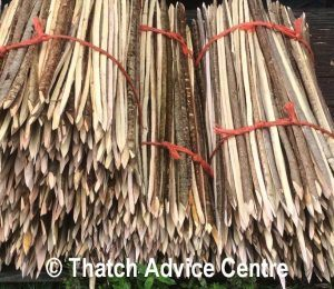 Thatching Spars from coppicing