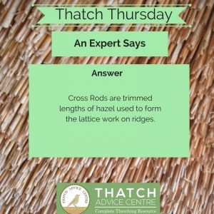 Thatch Thursday Cross Rods