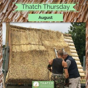 Thatch Thursday - Picture of the month 2