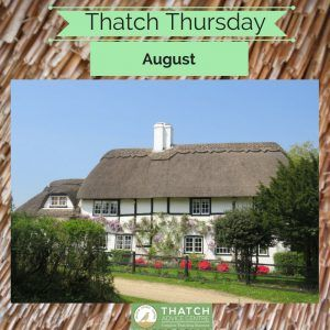 Thatch Thursday Picture of the month