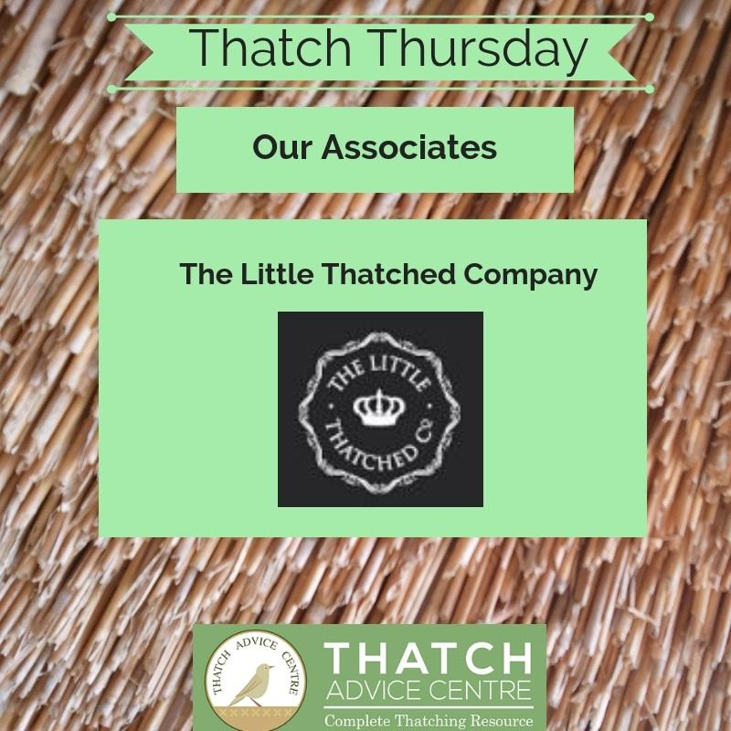 Thatch Thursday October 2018