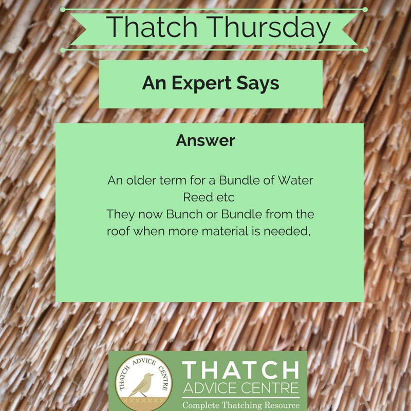 Thatch Thursday November 2018