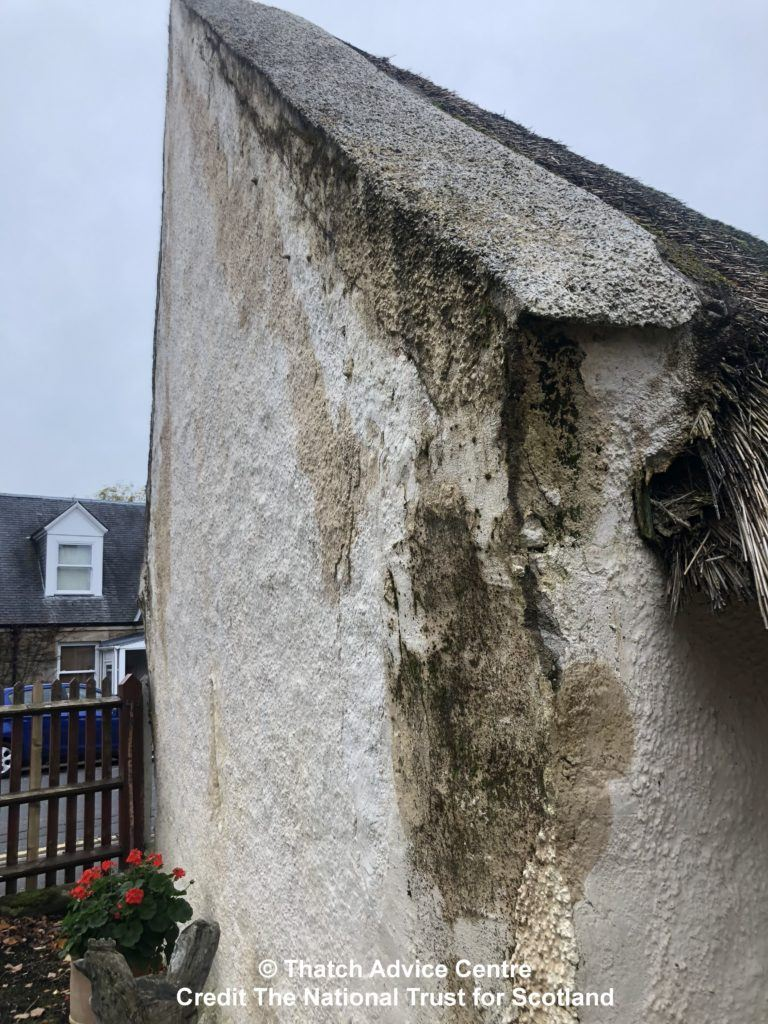 C- Thatch Advice Centre 2019 - Burns Cottage Appeal wall