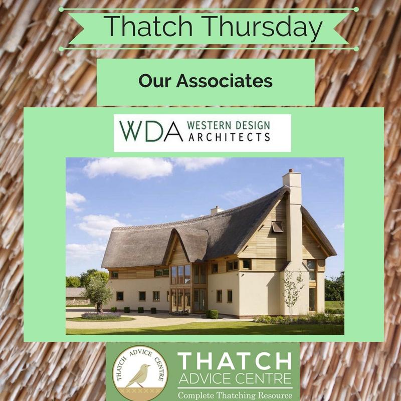 Thatch Thursdays April 2019