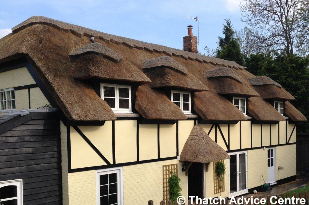 Thatch Roof Design - four dormer windows