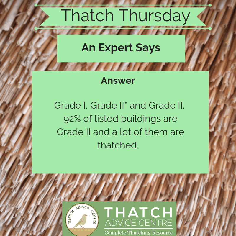 Thatch Advice Centre 2019