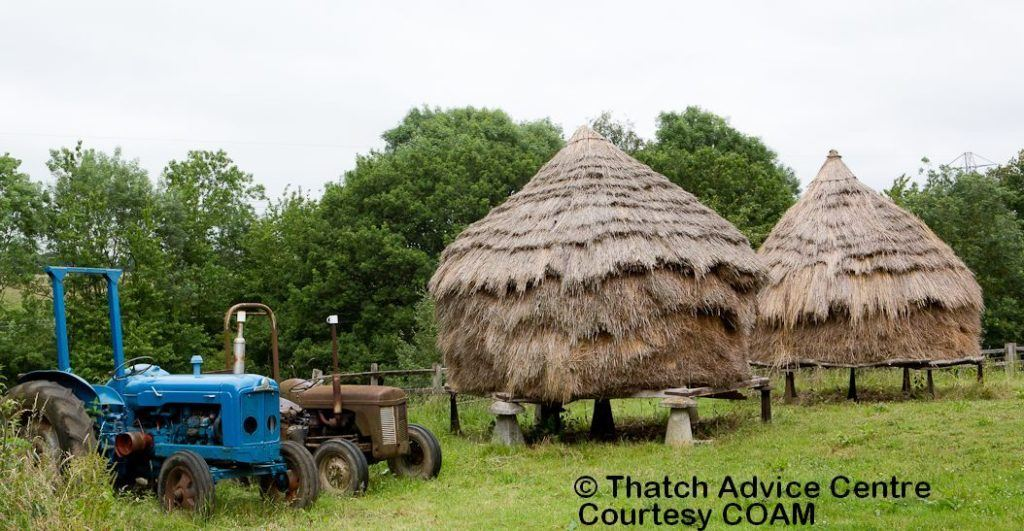 Hay Ricks and Tractors COAM