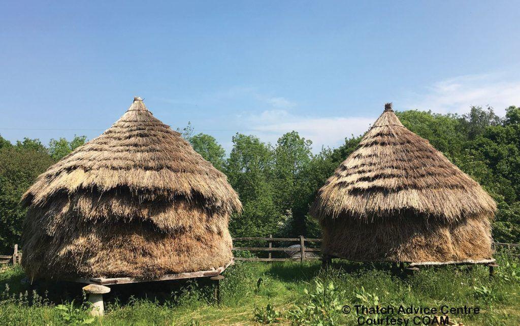 Thatched Hay Ricks COAM