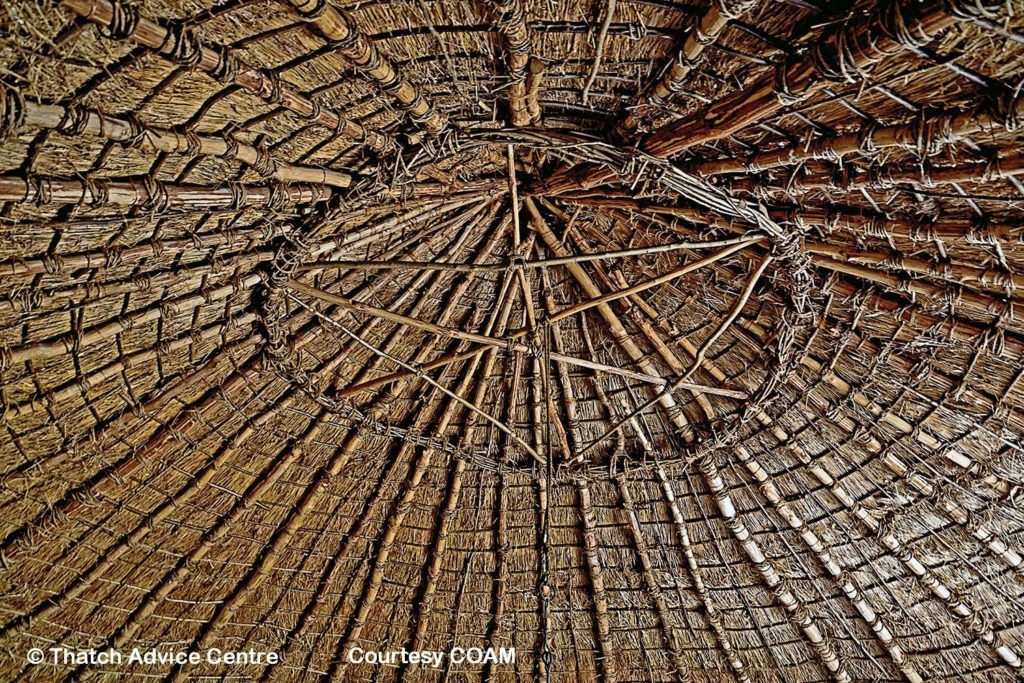 Iron Age Roundhouse roof COAM