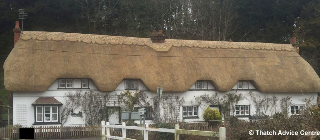 Thatching Organisations - Wherwell rethatch