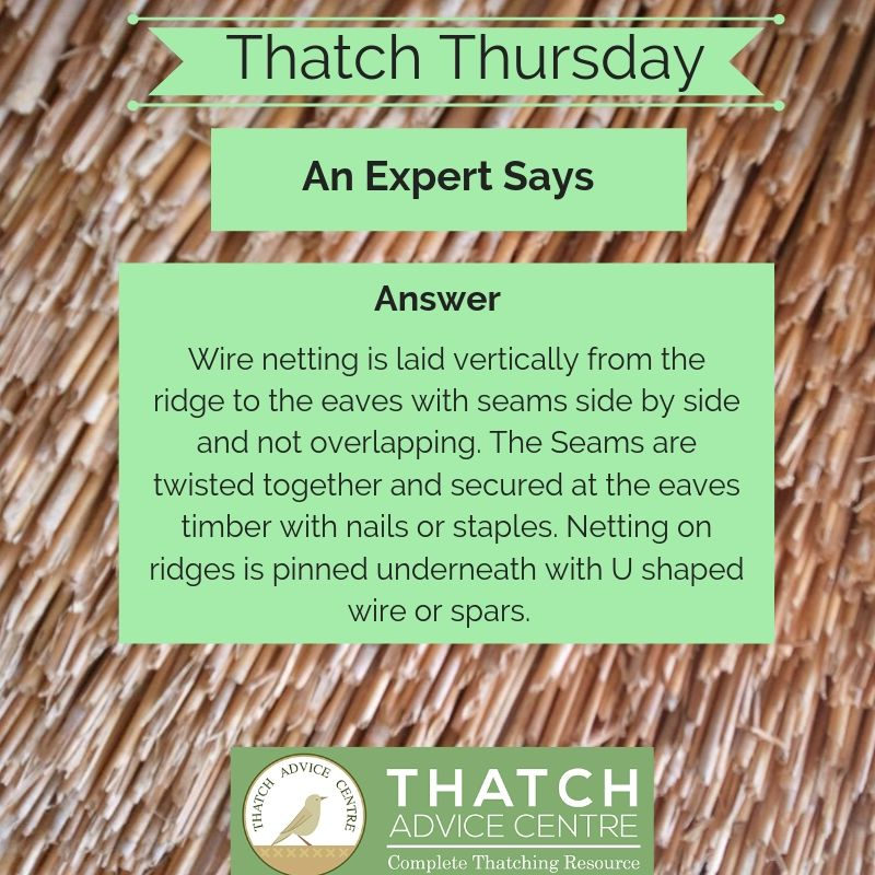 Thatch Thursday September 2019
