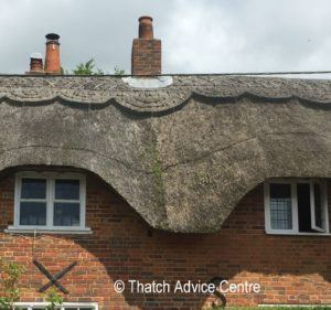 gulley forming in thatched roof
