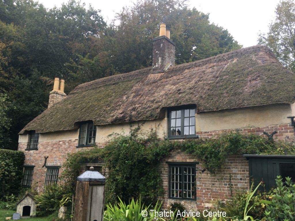 Hardy's Cottage September 2019