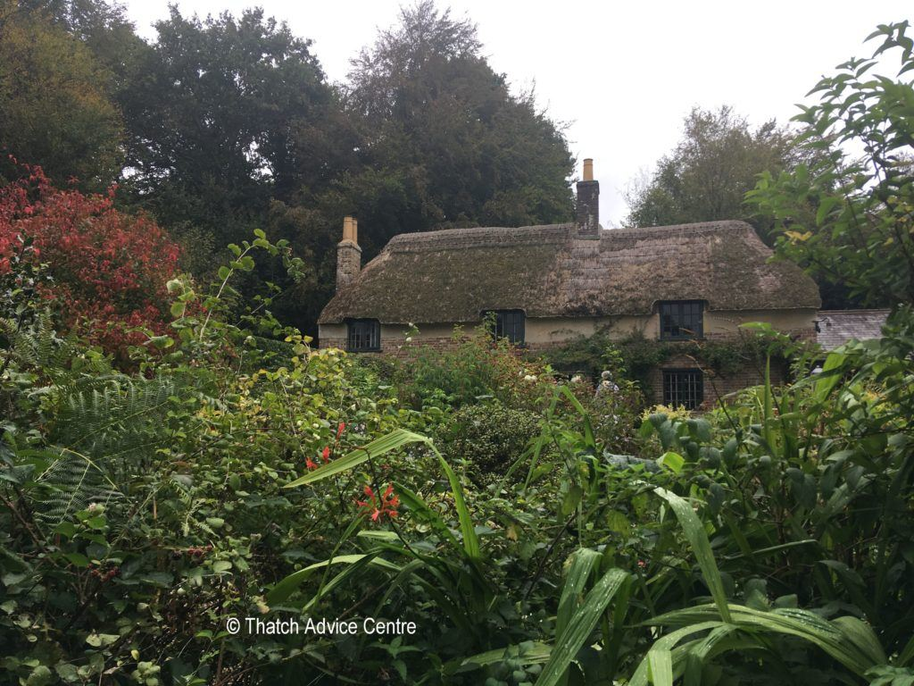 Hardy's Cottage - approach from the garden