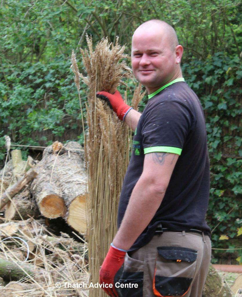 Roof Thatcher with a bundle of water reed