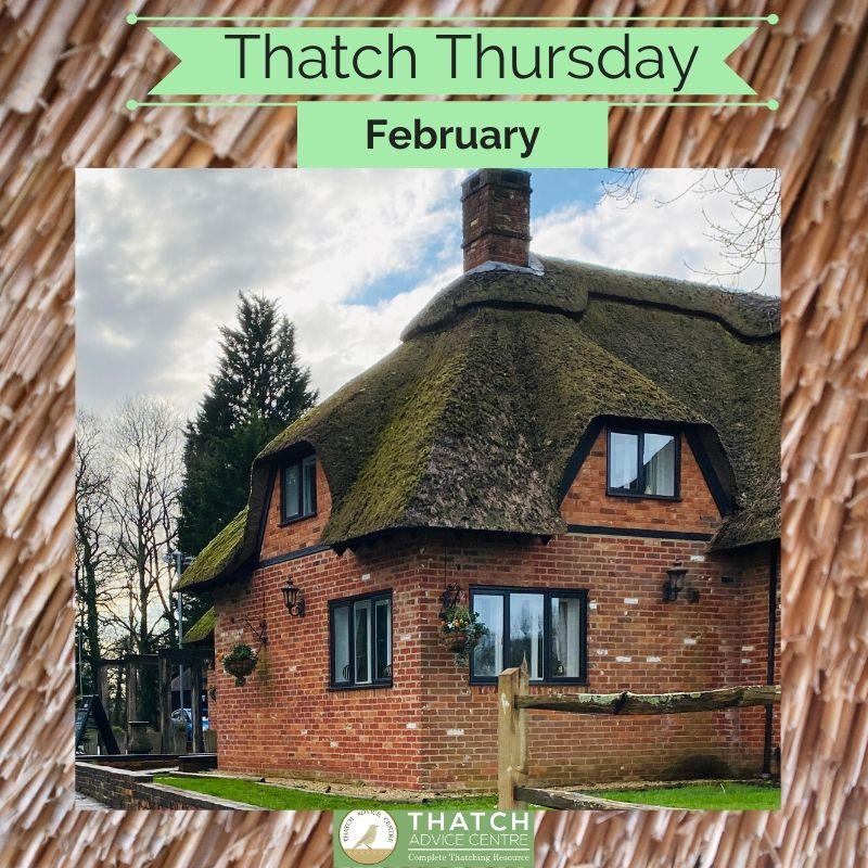 Thatch Thursday February 2020