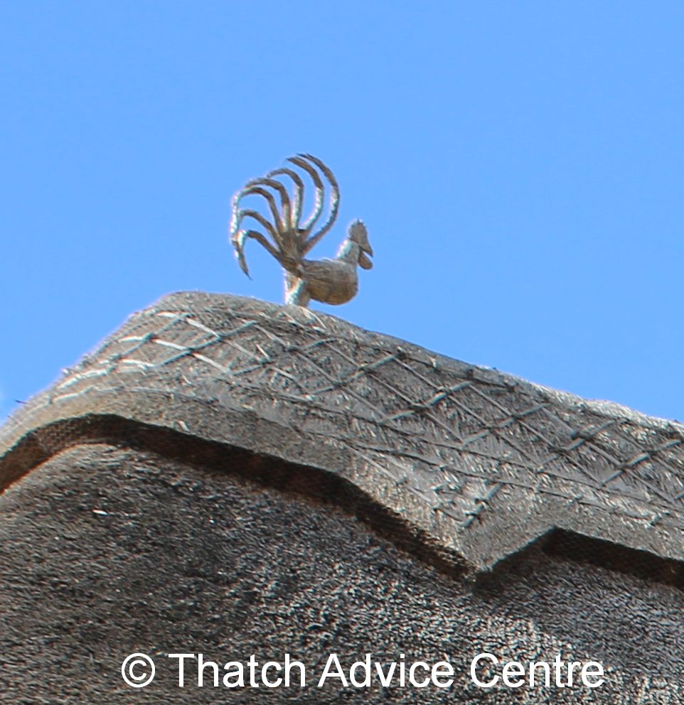 Thatch Finial Fun Picture Competition 2