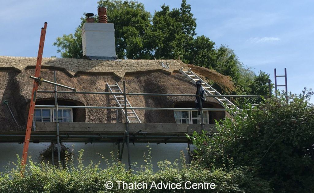 Health and Safety - thatching work in progress
