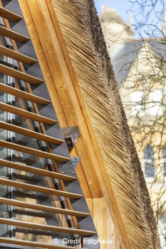 Christ Church Visitor Centre - thatch architecture close up 1