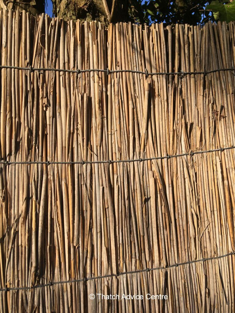 Reed Fencing - alternative uses of thatching materials
