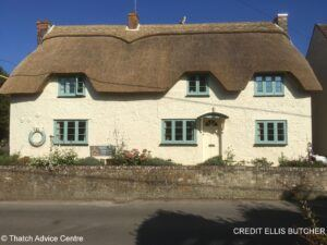 Thatch Finial Fun Gallery - Credit E Butcher owl on roof