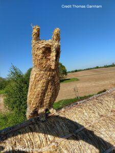 Thatch Finial Credit T Garnham owl