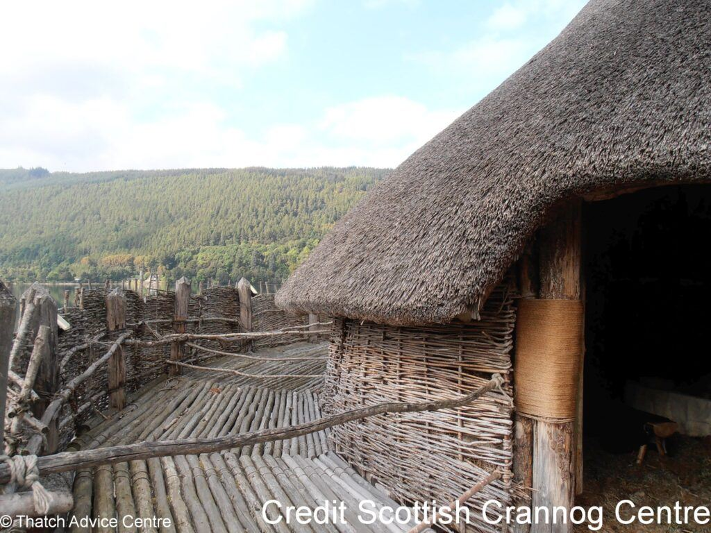 Thatch Advice Centre Article - Scottish crannog centre island view
