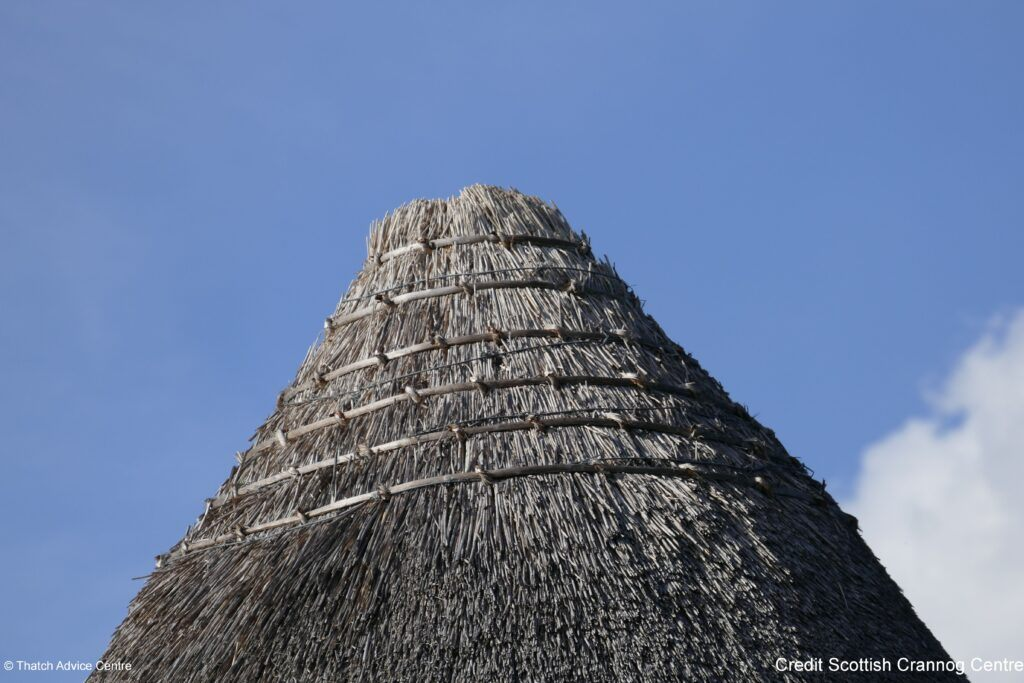 Thatch Advice Centre Article - Scottish Crannog Centre - thatch