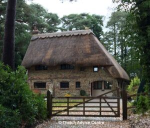 Thatch Advice Centre - Finial Fun Gallery - New Forest SMF Crouch