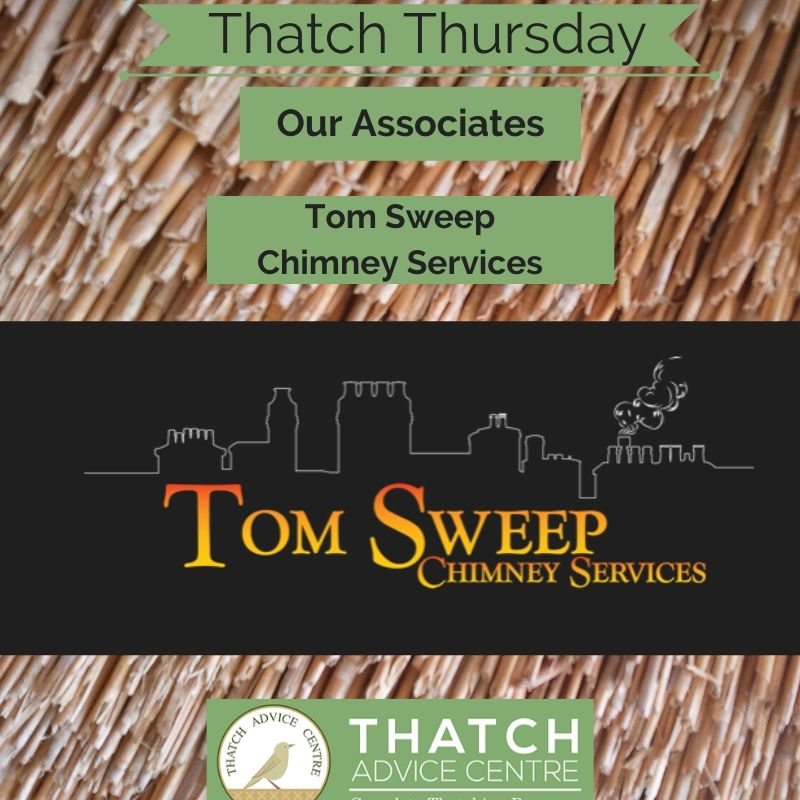 Thatch Thursdays August 2020