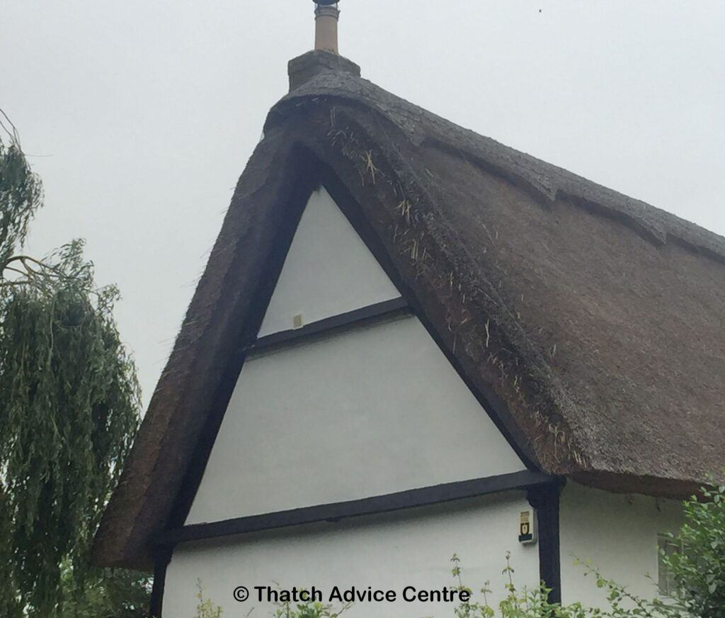 Vermin problems in thatched roof - mice