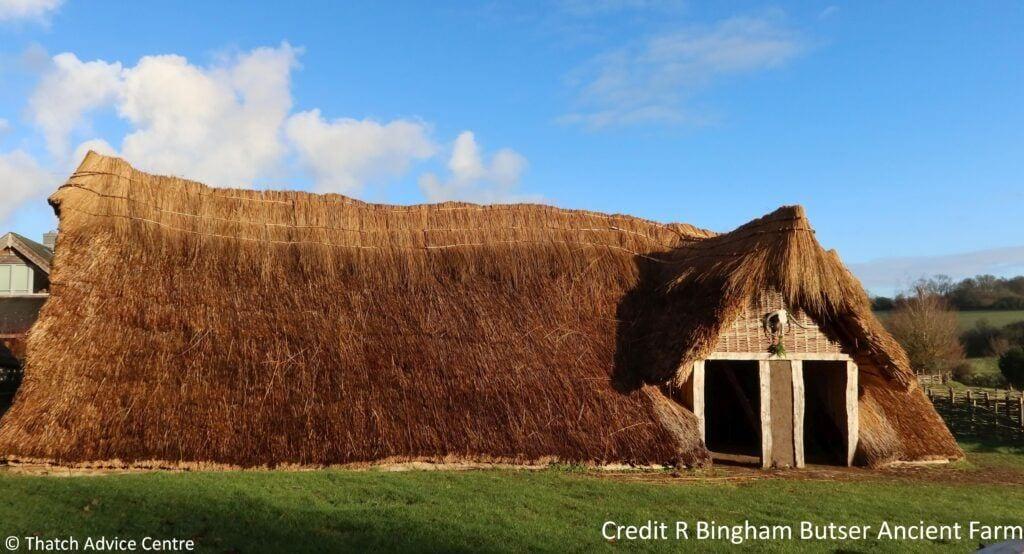 Butser Ancient Farm - Horton House thatch