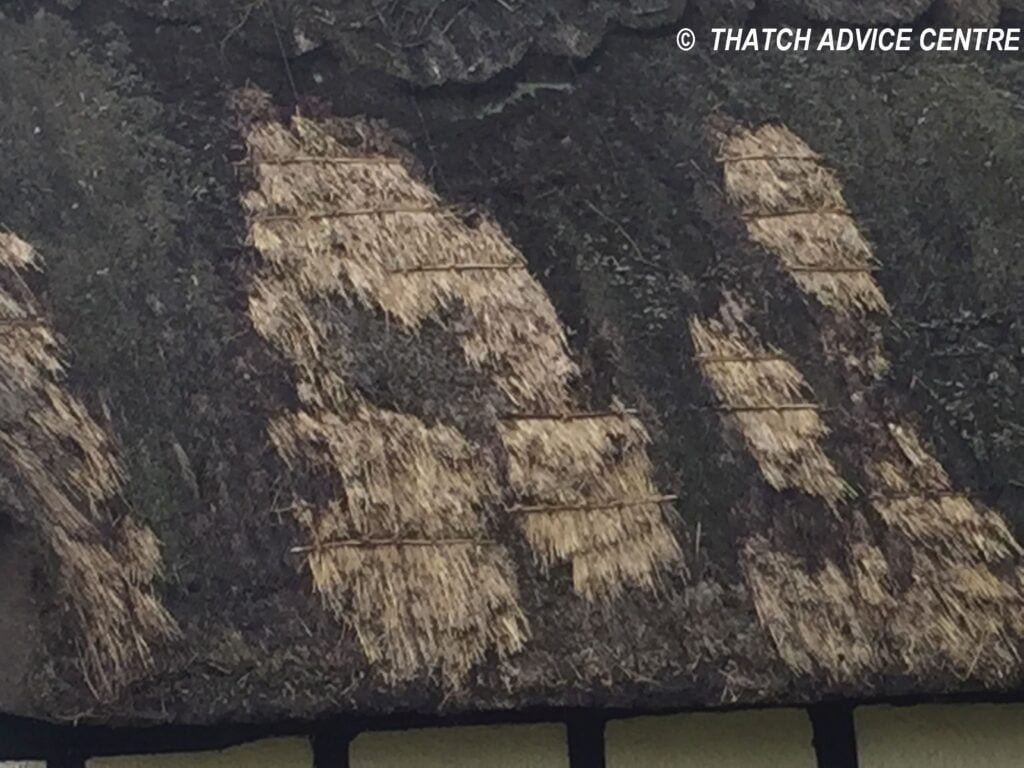 Patching with thatching straw